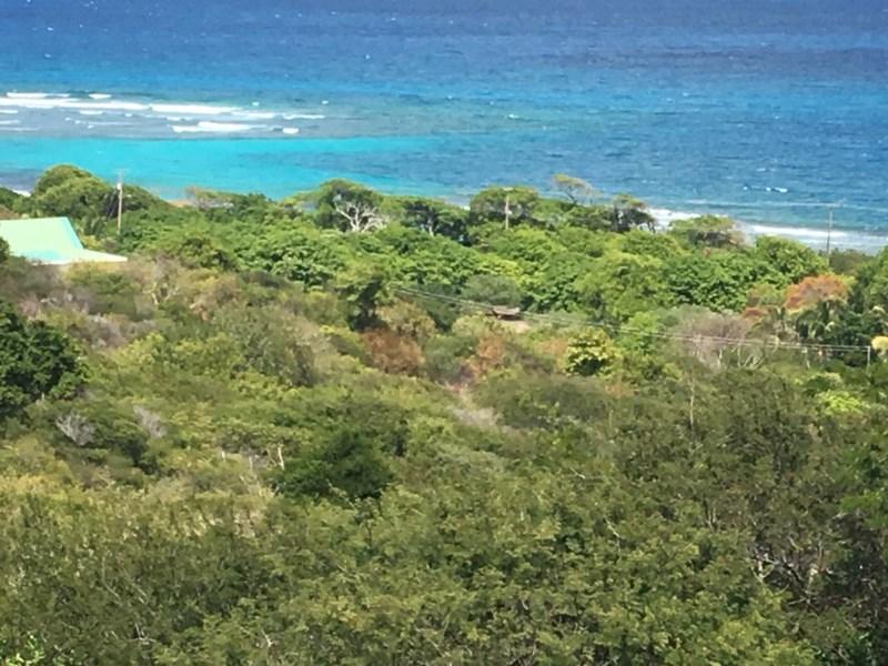 RE/MAX real estate, St. Vincent & Grenadines, Rapid, UNION ISLAND LOT EC$875,556