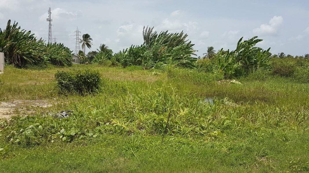 RE/MAX real estate, Trinidad and Tobago, Barataria, Land for sale in Aranguez North