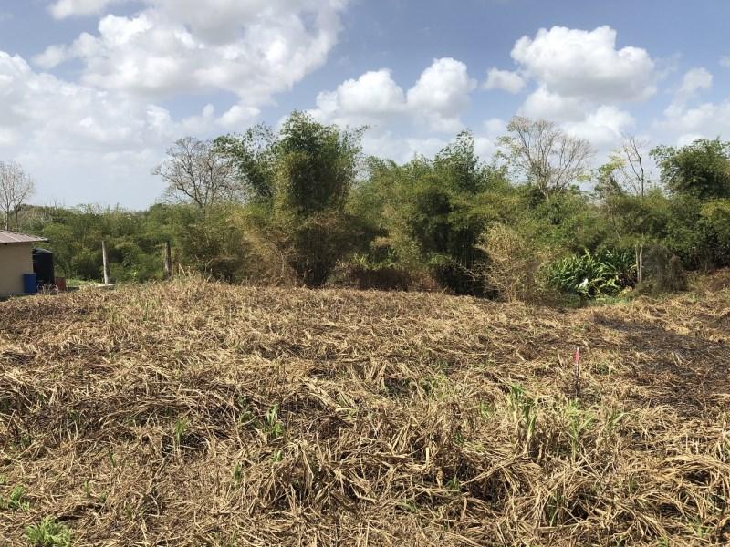 RE/MAX real estate, Trinidad and Tobago, Gran Couva, Gran Couva 20F