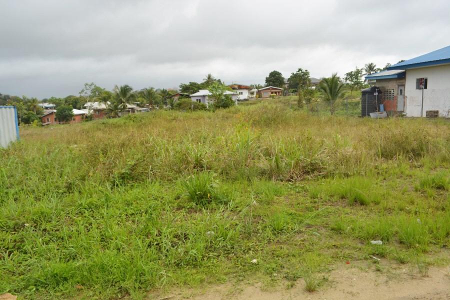 RE/MAX real estate, Trinidad and Tobago, Sangre Grande, Sangre Grande Land