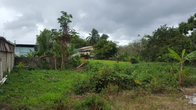 RE/MAX real estate, Trinidad and Tobago, Sangre Grande, 4500 s.f Freehold Land, Logan Drive, Sangre Grande, No Approvals