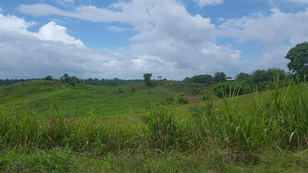 RE/MAX real estate, Trinidad and Tobago, Gran Couva, 7 Acres Agri Freehold Land, Gran Couva