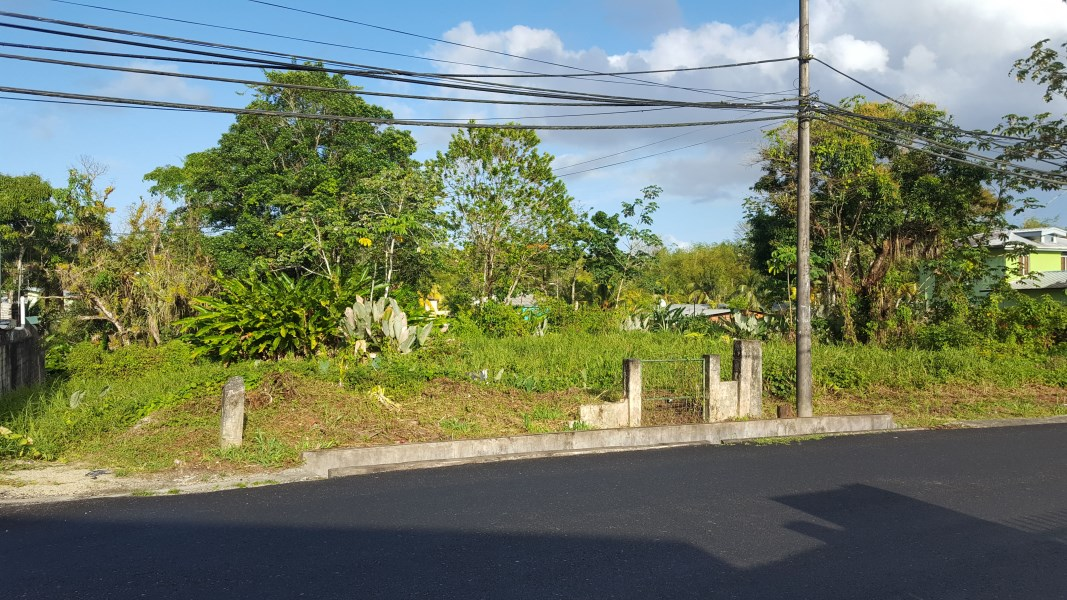 RE/MAX real estate, Trinidad and Tobago, Sangre Grande, Freehold Lot, Foster Road, Sangre Grande