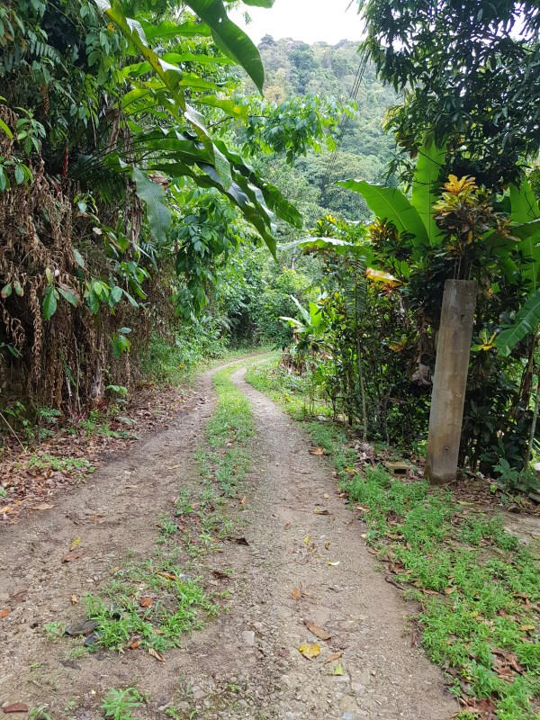 RE/MAX real estate, Trinidad and Tobago, Las Cuevas, Las Cuevas Land for Sale