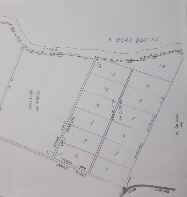 RE/MAX real estate, Trinidad and Tobago, Saint Joseph, Mayaro 65 Acres Adjacent  to HDC Development