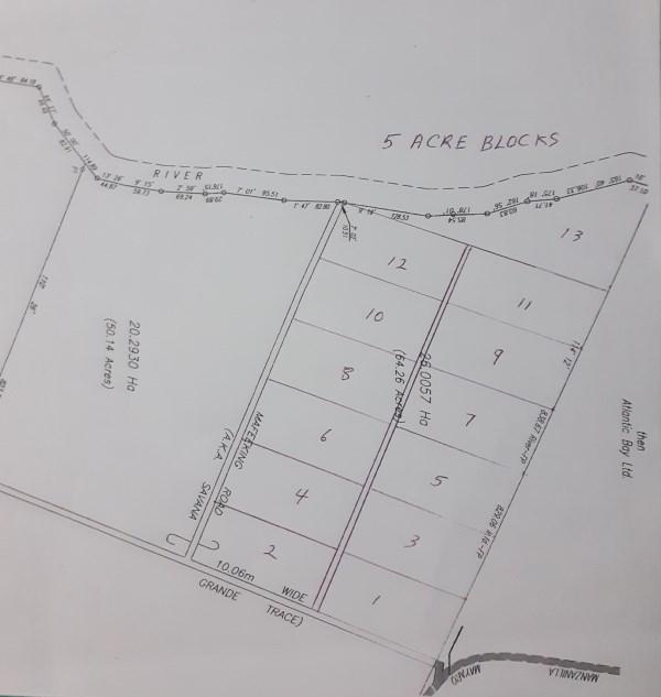 RE/MAX real estate, Trinidad and Tobago, Saint Joseph, Mayaro 65 Acres Adjacent  to HDC Development