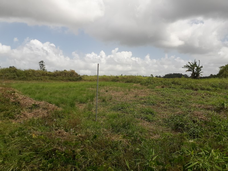 RE/MAX real estate, Trinidad and Tobago, Cunupia, 1 lot of Land Central