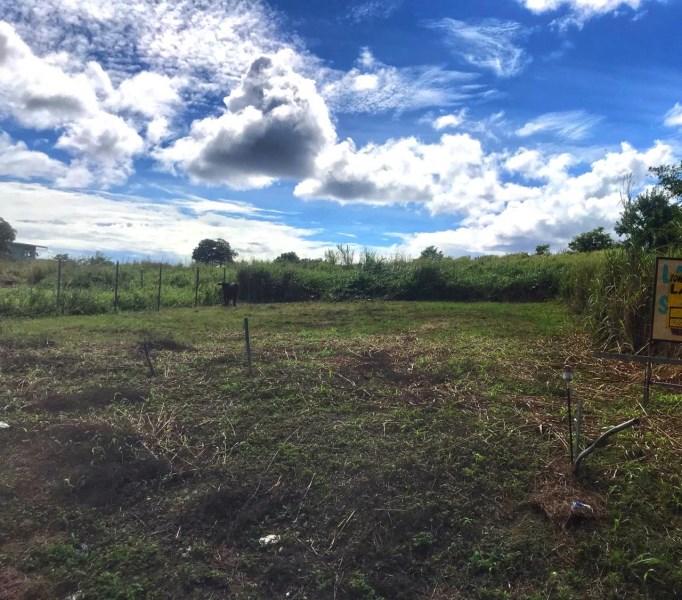 RE/MAX real estate, Trinidad and Tobago, Peñal, 4.7 Acres Land for Sale - Quarry Road Penal