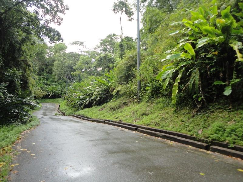 RE/MAX real estate, Trinidad and Tobago, Grande Riviere, Grand  Riviere