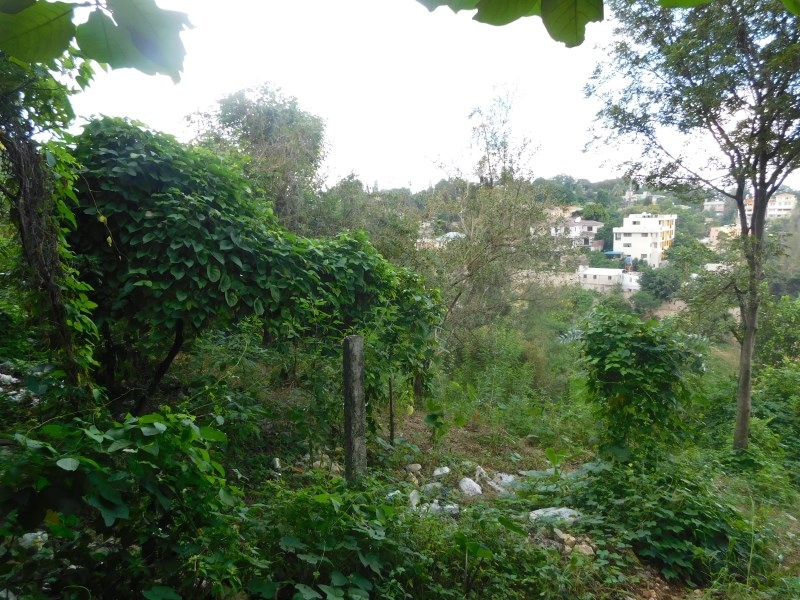 RE/MAX real estate, Haiti, Port-au-Prince - Petionville, 8 hundredths of land For Sale in Pelerin 4, Haiti