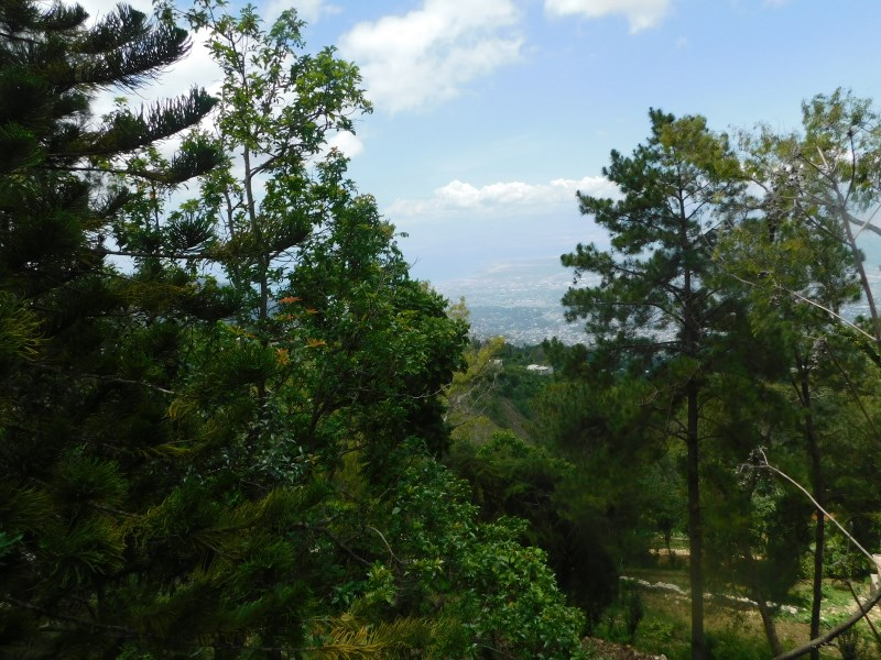 RE/MAX real estate, Haiti, Fort Jacques, Beautiful Land for Sale in Fort Jacques Duplan 2 Haiti