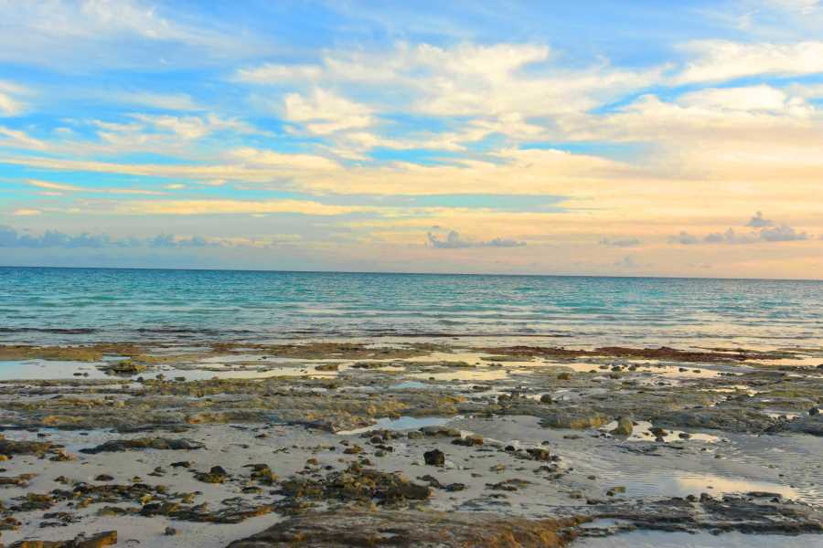 RE/MAX real estate, Bahamas, East End, BEACHFRONT LOT AT TURTLE REEF