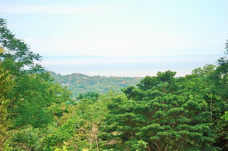 Remax real estate, Costa Rica, Ojochal, Executive acreage with ocean views.
