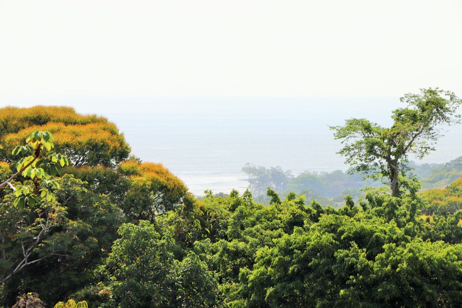 Remax real estate, Costa Rica, Ojochal, PASSAGE TO PARADISE! Views Galore....sunsets, ocean, mountains...and minutes to the beach!