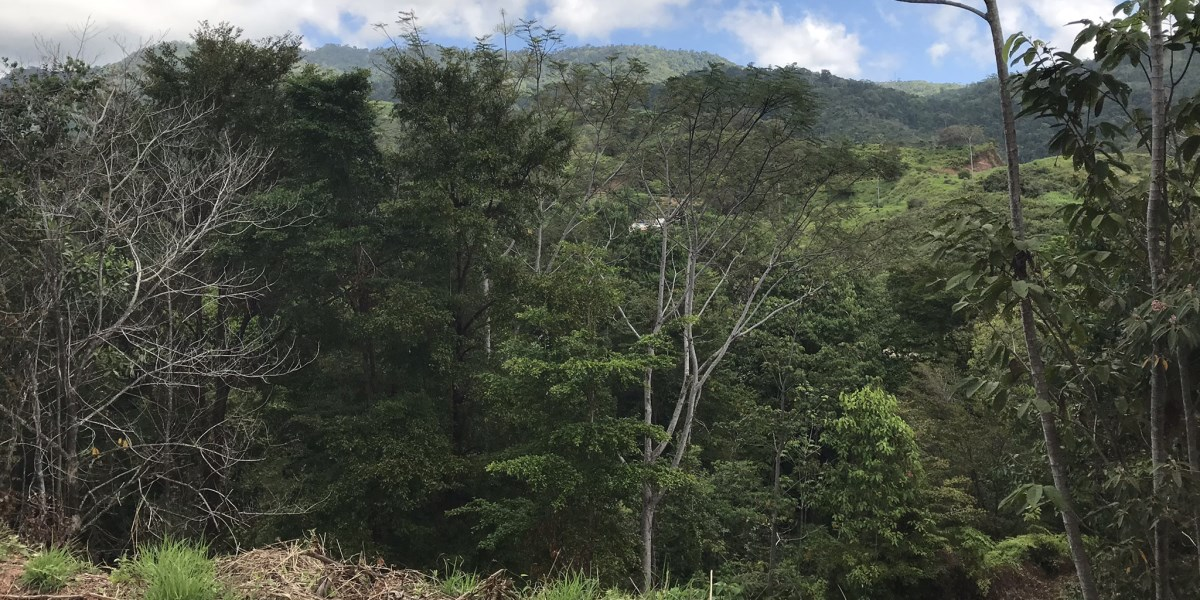 Remax real estate, Costa Rica, Chontales, Lot 112 in the Suenos del Tropico development in Chontales with mountain jungle views