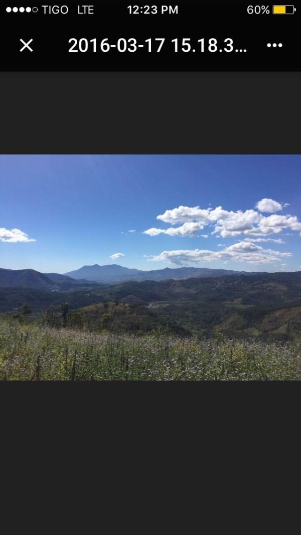 Remax real estate, Guatemala, Cuilapa, Coffee, banana and wood farm