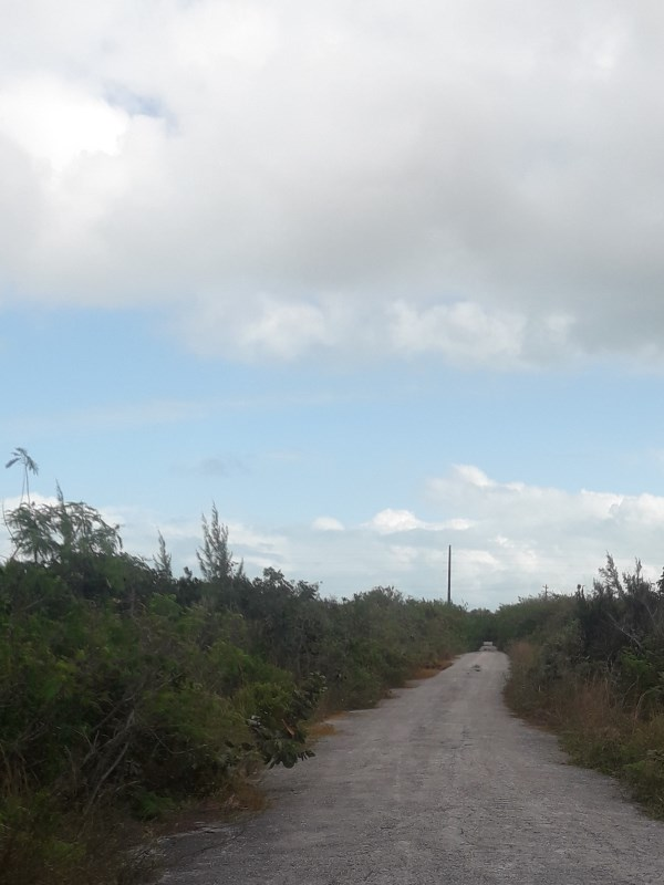 RE/MAX real estate, Bahamas, West End, Buccaneer Beach Lot