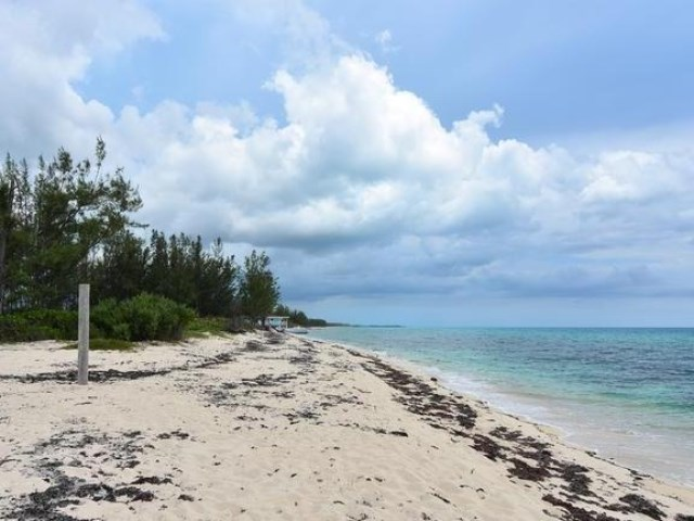 RE/MAX real estate, Bahamas, West End, AWESOME BEACHFRONT LOT