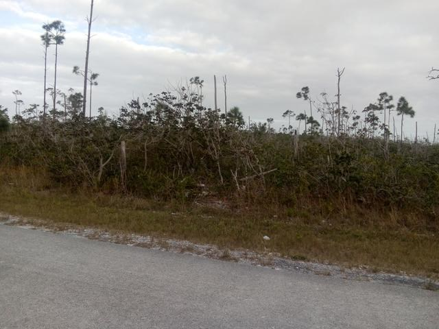 RE/MAX real estate, Bahamas, Freeport, VACANT LOT MAPLESTEAD