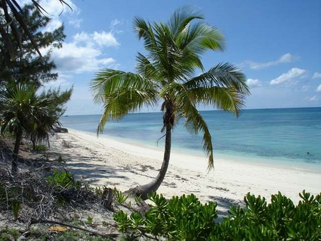 RE/MAX real estate, Bahamas, Rose Island, BEACHFRONT LOT