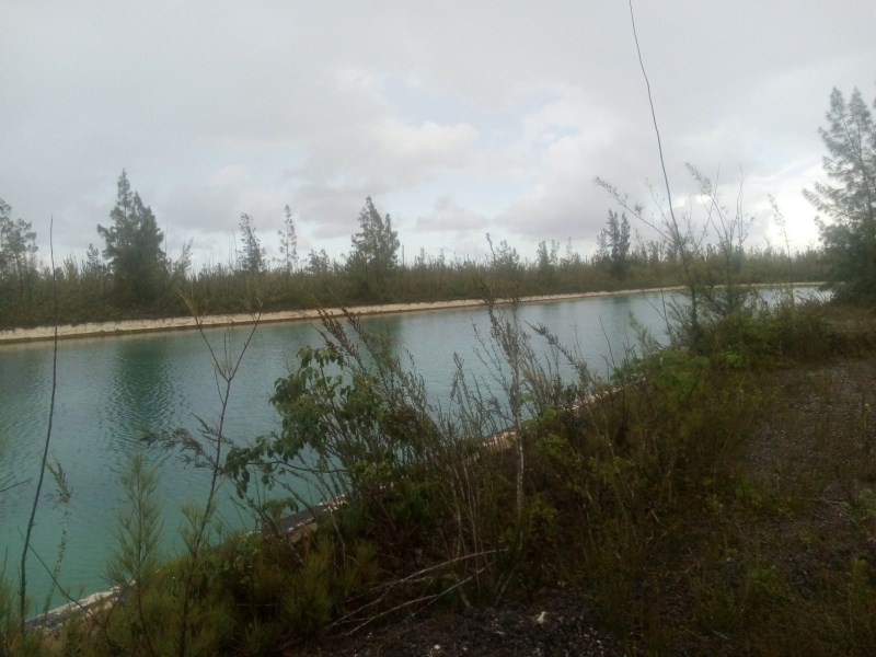 RE/MAX real estate, Bahamas, Freeport, CANAL FRONT LOT DOVER SOUND