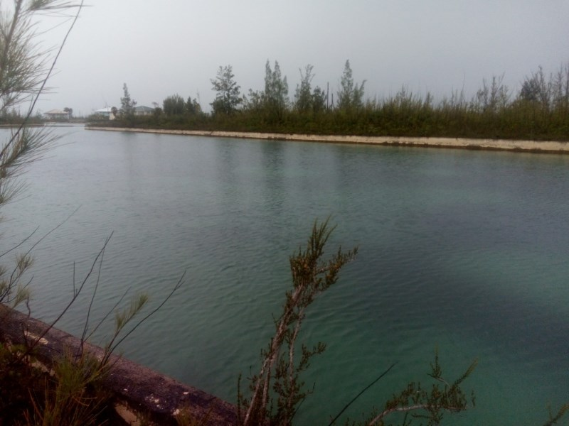 RE/MAX real estate, Bahamas, Freeport, DOVER SOUND CANAL LOT