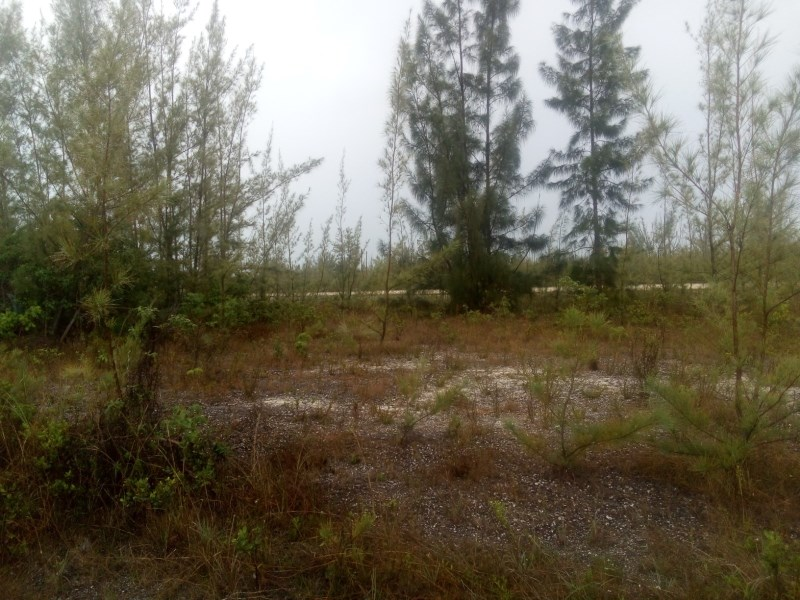RE/MAX real estate, Bahamas, Freeport, CARAVELLE BAY LOT ON CANAL