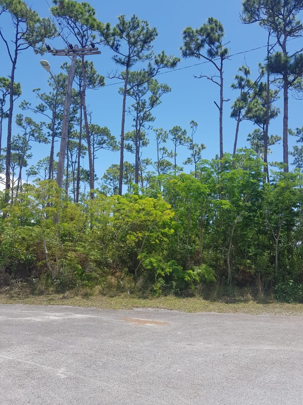 RE/MAX real estate, Bahamas, Sherwood Estates, SHERWOOD FOREST LOT