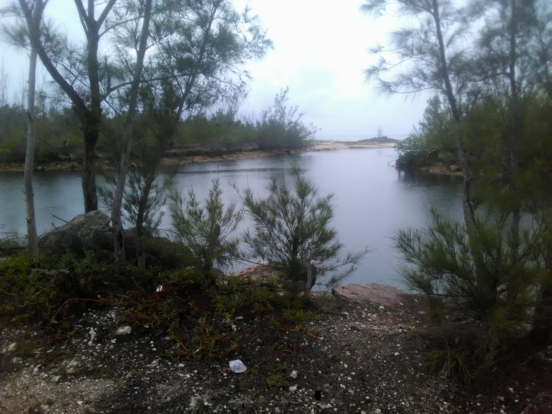 RE/MAX real estate, Bahamas, West End, BAHAMA BEACH CANAL FRONT LOT