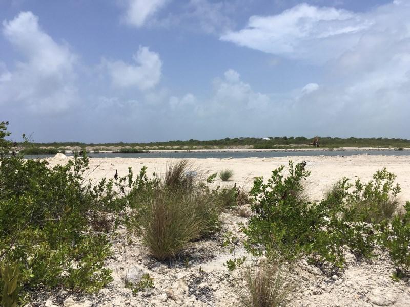 RE/MAX real estate, Belize, San Pedro, Palmaya Woods - Secret Beach Area