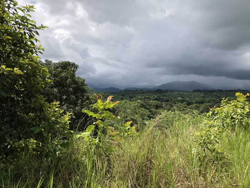 Remax real estate, Costa Rica, Quepos, Beautiful property for sale, with sunset view very close to Quepos centre on a small hill with water, electrictiy and public road access