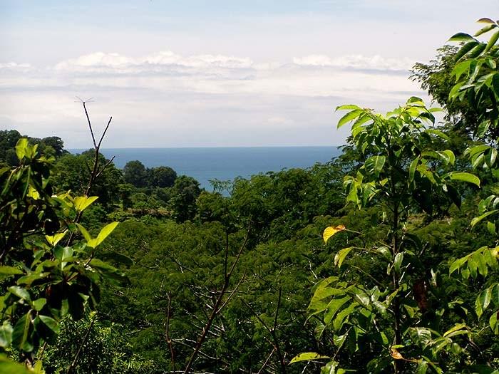 Remax real estate, Costa Rica, Manuel Antonio, Manuel Antonio, spectacular property for sale! Valle Pura Vida, Ocean view lot