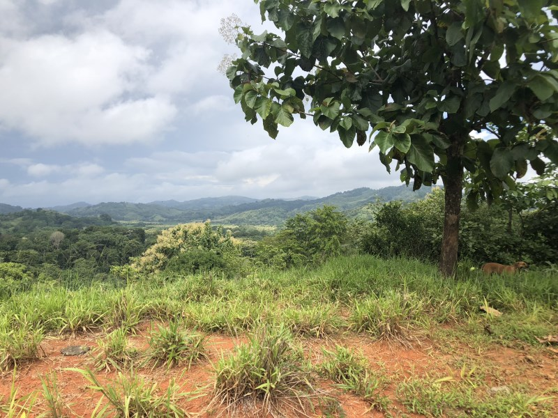 Remax real estate, Costa Rica, Parrita, Large 12h property for sale, ready to build your house, only 20' from Parrita
