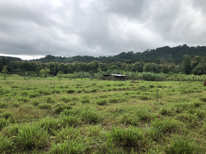Remax real estate, Costa Rica, Parrita, Very attractive property for sale, agriculture use or build your house, Bijagual 20' from Parrita