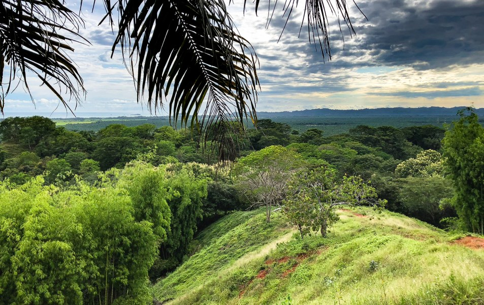 Remax real estate, Costa Rica, Savegre de Quepos, Absolutely stunning property for sale, 20 hectares, 20' from Manuel Antonio, best ocean and moutain view in Costa Rica!