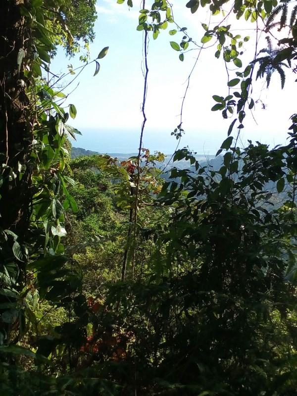 "Remax real estate, Costa Rica, Quepos, Tierras Morenas: ""Finca linda vista"", beautiful huge property for sale! 97 hectares (240 acres) with ocean view, 760m above sea level (2500 feet)"
