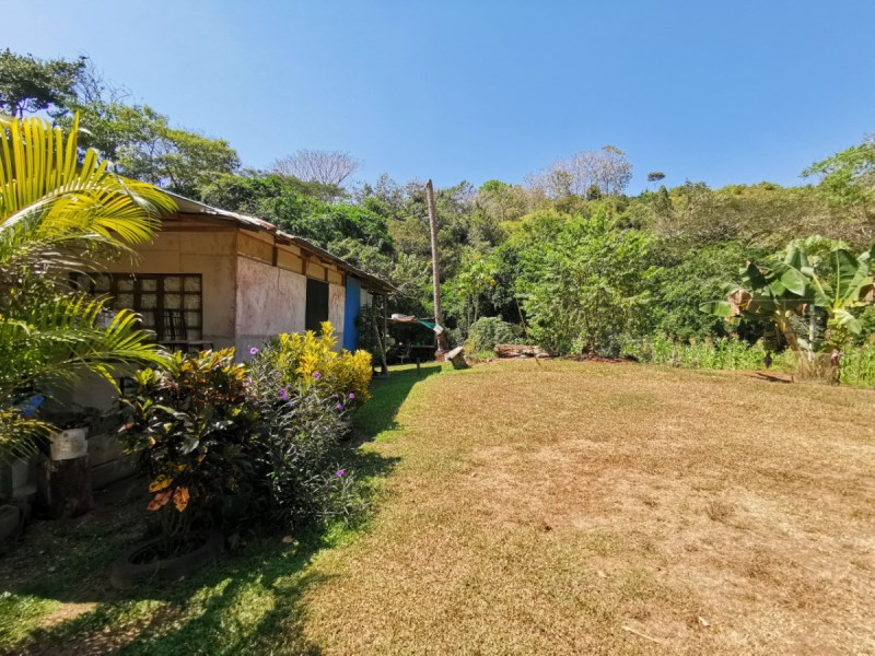 Remax real estate, Costa Rica, Quepos, Londres, Quepos: 3 houses on large property for sale, many fruit trees, creek running through property, nature lover's dream!