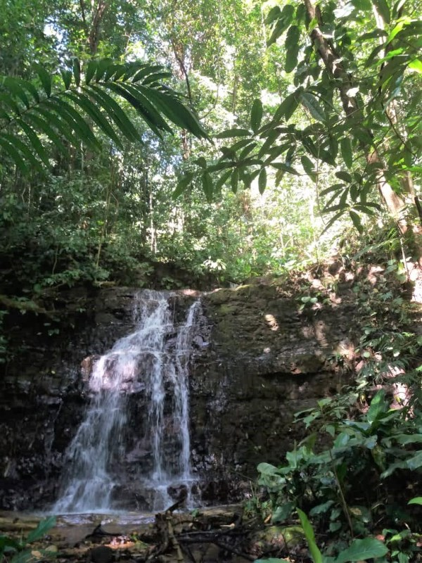 Remax real estate, Costa Rica, Quepos, Londres, Quepos: Own your own private ocean view lot and 20ft waterfall surrounded by over 300 acres of lush rainforest