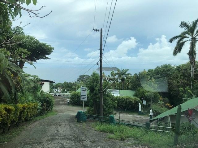 Remax real estate, Costa Rica, Manuel Antonio, Lot behind to the Arboleda Hotel en Manuel Antonio Quepos. New price $199,000.