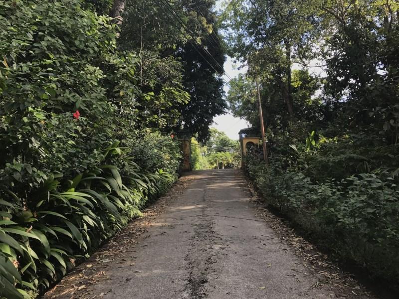 Remax real estate, Costa Rica, Manuel Antonio, Canon Verde Lot – Last Lot Available