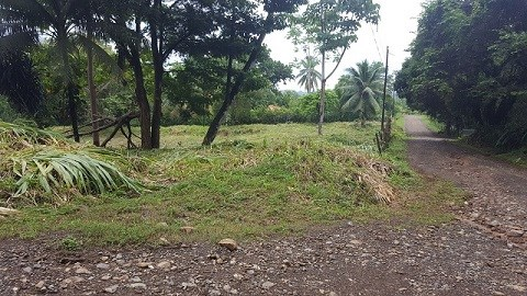 Remax real estate, Costa Rica, Puerto Dominical, Ojochal Pie in the Sky. NEW PRICE!! BEFORE $55,000  NOW $50,000 JJ