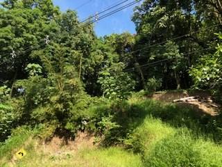 Remax real estate, Costa Rica, Manuel Antonio, Lot road to Manuel Antonio Quepos. Great opportunity!! Price  $280,000 negotiable.