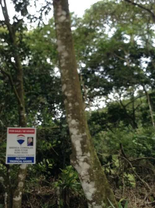Remax real estate, Costa Rica, Puriscal-Mercedes Sur, BEAUTIFUL PROPERTY LOCATED AT 800 MTS FROM RUTA 239, MERCEDES SUR PURISCAL. B