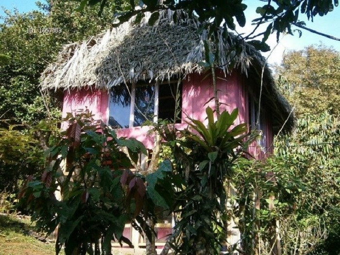 Remax real estate, Costa Rica, Sarapiquí de Heredia - La Virgen, View Catarata-3 Houses-Cultivation-Wild Life!! We offer a property for nature lovers. J