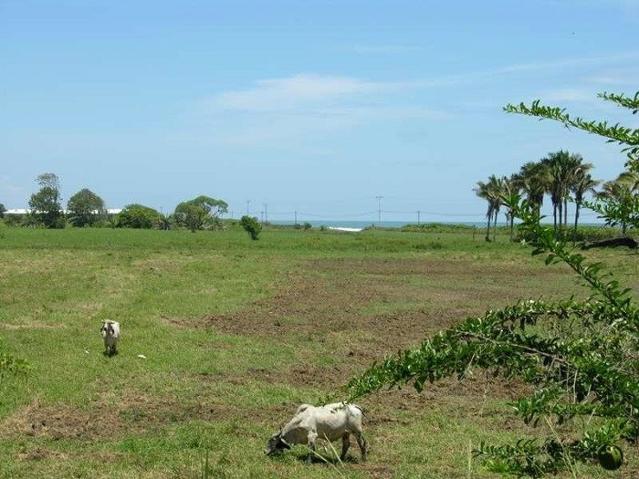 Remax real estate, Costa Rica, Jaco, Land with 1,300 meters in front of Playa to develop in Playa Hermosa, contiguous to Jaco Puntarenas. The property is located in Playa Hermosa. J