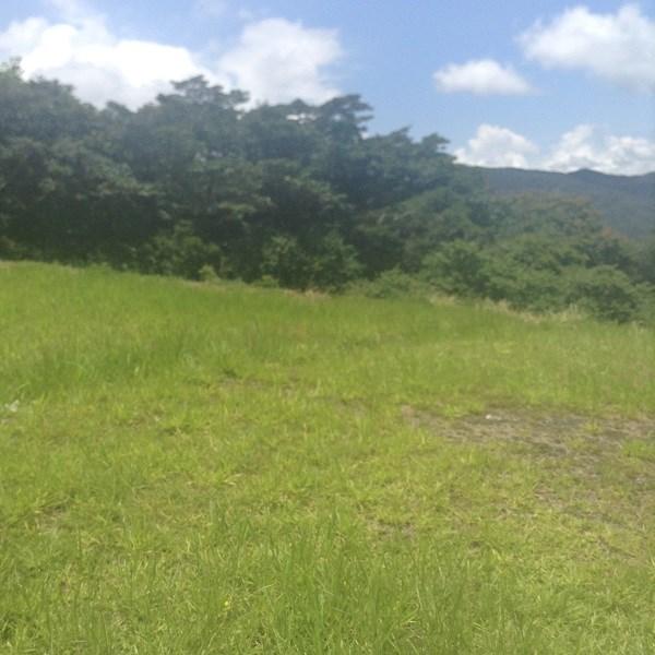 Remax real estate, Costa Rica, Mora - Ciudad Colón, For sale lot #19 Cerro Colon. The lot is very flat, with an impressive view. B