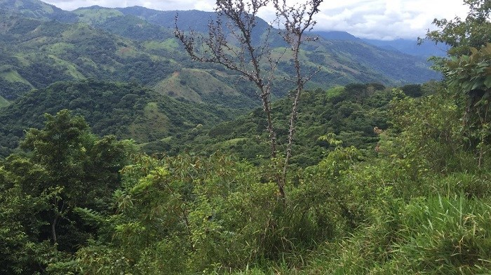 Remax real estate, Costa Rica, San Jose, Property in CHIRES de PURISCAL, 137 + HECTARES $ 5000 M2. B