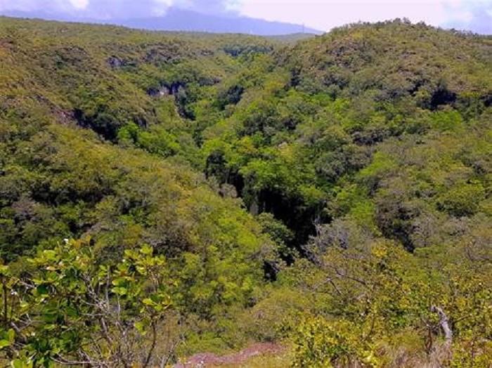 Remax real estate, Costa Rica, Rincon, Finca del Rincon. This beautiful finca located at the foot of Rincon de la Vieja National Park. J