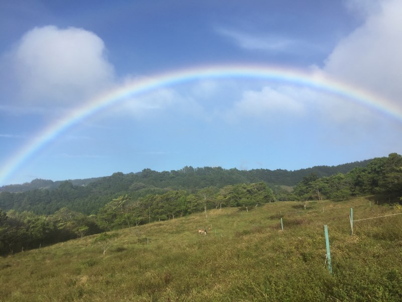 Remax real estate, Costa Rica, San Rafael de Heredia, The farm is 11 hectares, in San Rafael de Heredia. Reduced price of $ 1,000,000 reduced to $ 600,000 !! J