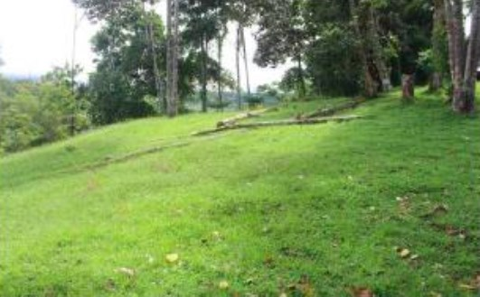 Remax real estate, Costa Rica, Uvita, Magnificent location in front of the coastal highway in Uvita. Residential and commercial land use. C